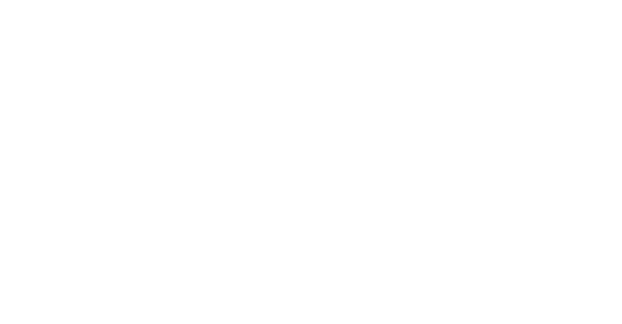 Enterprise Magento Solutions Partner Badge